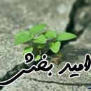 امید بخش ترین آیه قرآن از نگاه حضرت علی(علیه السلام) کدام آیه است؟