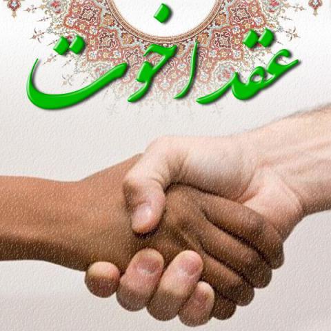 چند پیمان اخوت در اسلام وجود دارد و تفاوت آن ها با غدیر چیست؟