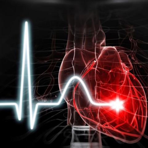 در مورد ویژگی های قلب در قرآن و در تعابیر عارفان توضیح بفرمایید