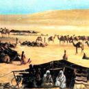 عرب جاهلی به لحاظ علم و هنر در چه سطحی بود؟