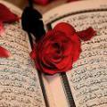 آيا درست است كه در قرآن از عشق و محبت نامي برده نشده است؟