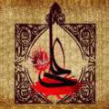 آیا عایشه با شنیدن خبر شهادت امام علی (علیه السلام)، سجده کرده است؟